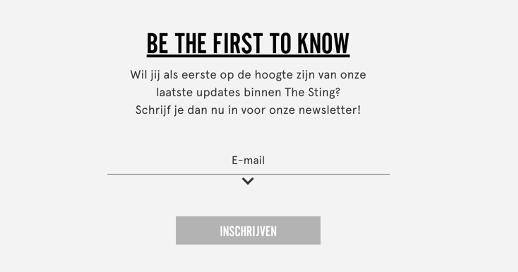 voorbeeld van een nieuwsbrief lead magnet op de website van the sting